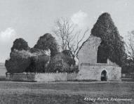 Roscommon History and Heritage: 7