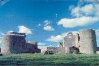 Roscommon Castle (postcard posted 1984)