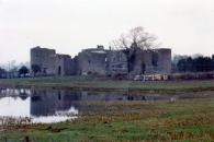 Roscommon Castle (1268) and Loughnannane